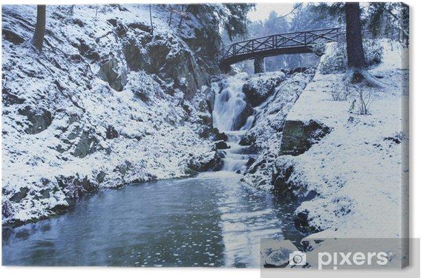 Tableau sur toile Cascade et le pont sur la rivière dans la forêt d'hiver - Saisons