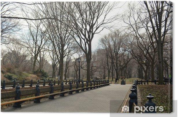 Tableau sur toile Central Park à New York - 22 - PI-31