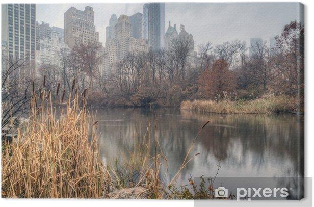 Tableau sur toile Central Park, New York City le jour de brouillard - Amérique