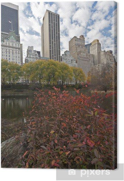 Tableau sur toile Central Park - Villes américaines