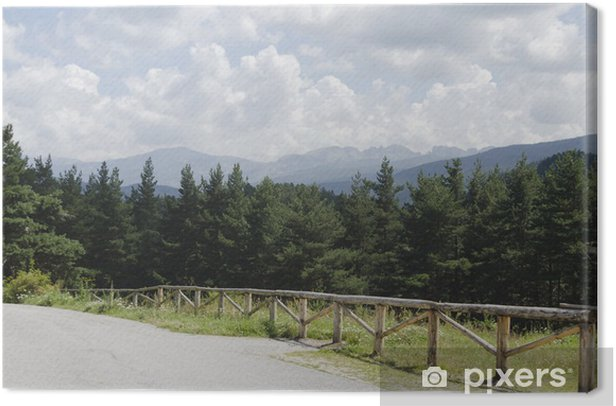 Tableau sur toile Chemin à travers la forêt verte et de hauts sommets dans la montagne de Rila - Saisons