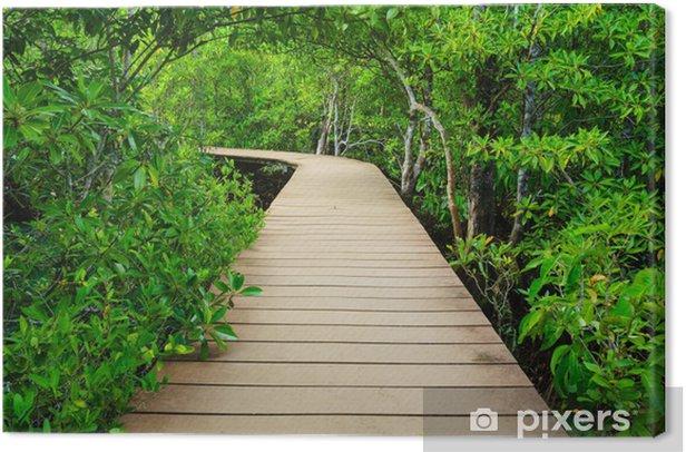 Tableau sur toile Chemin dans la jungle, Trang, Thaïlande - Thèmes