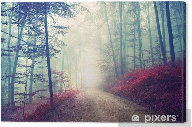 Tableau sur toile Chemin magique dans la forêt - Forêt
