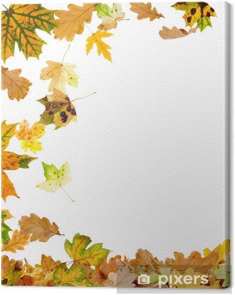Tableau sur toile Chêne d'automne et de feuilles d'érable de tomber au sol - Saisons