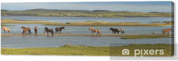Tableau sur toile Chevaux islandais - Europe