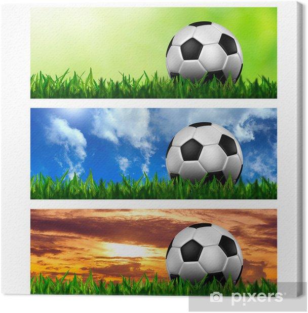 Tableau sur toile Chronologie de couverture (ratio 851x315) - Le football dans l'herbe verte - Sticker mural