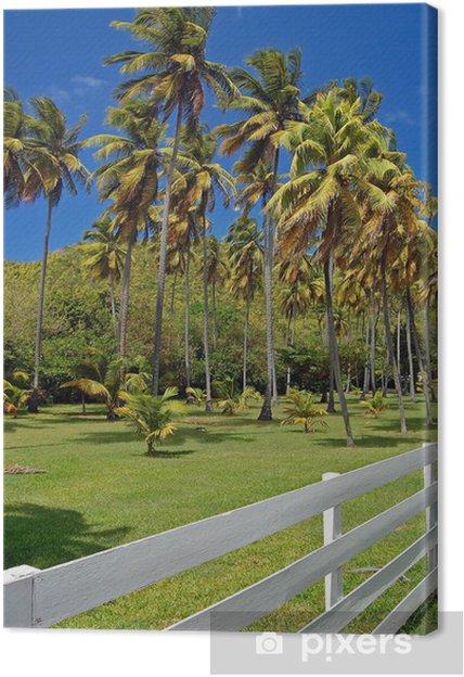 Tableau sur toile Clôture blanche de résidence de jardin privé sur ...