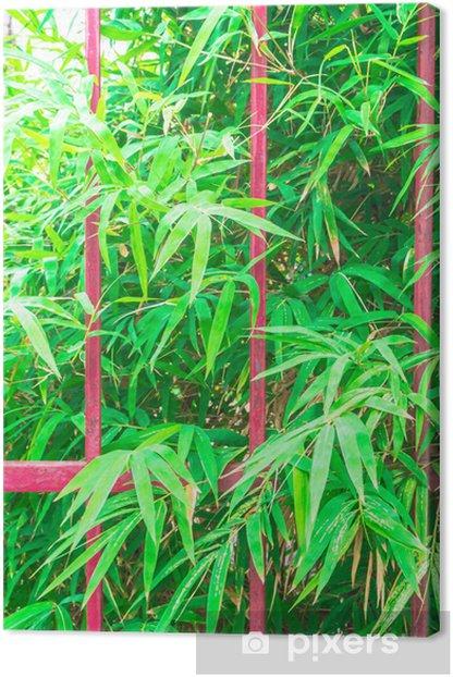 Tableau sur toile Clôtures Grille et feuilles de bambou fond. - Maisons et jardins