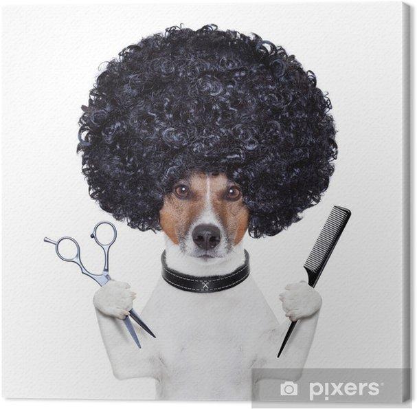 Tableau sur toile Coiffeur ciseaux chien de peigne - Sticker mural