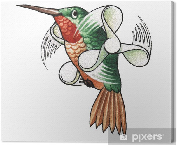Tableau sur toile Colibri - Oiseaux