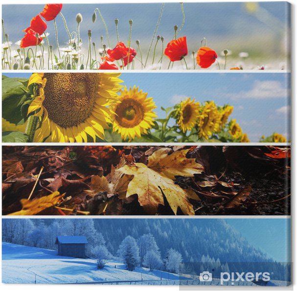 Tableau sur toile Collage de la saison - Agriculture