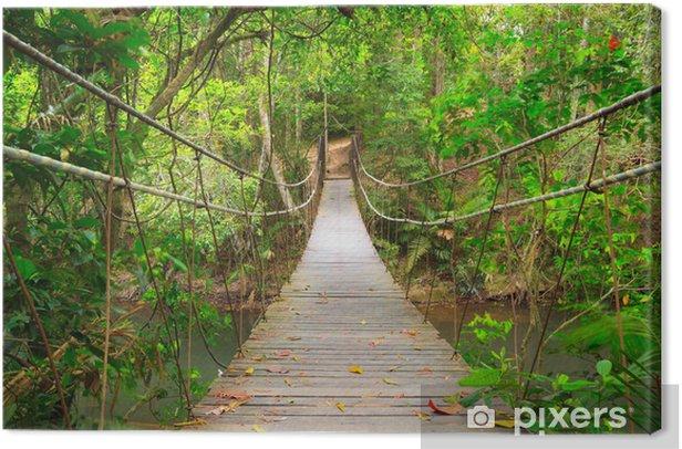 Tableau sur toile Combler dans la jungle, Parc national Khao Yai, Thaïlande - Styles