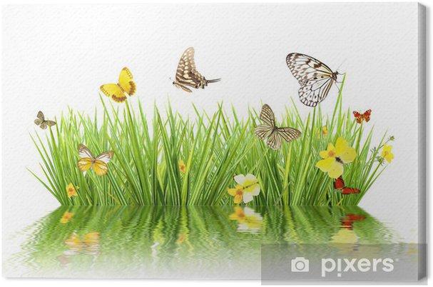 Tableau sur toile Concept de printemps avec prairie et réflexion de l'eau - Saisons