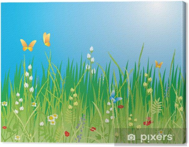 Tableau sur toile Contexte de printemps. Fleurs, papillons et herbe - vecteur - Fleurs