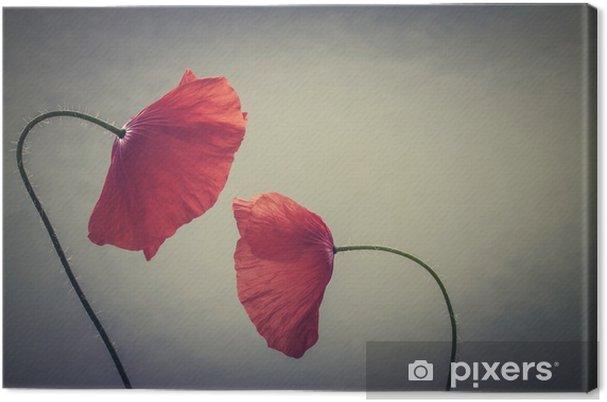 Tableau sur toile Coquelicots d'art - Plantes et fleurs
