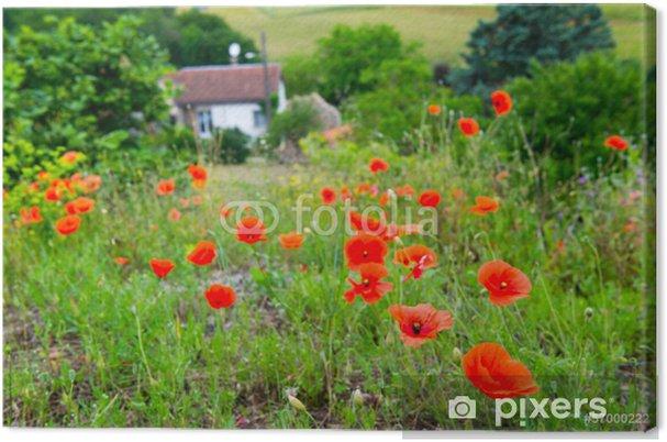 Tableau sur toile Coquelicots rouges en France - Campagne