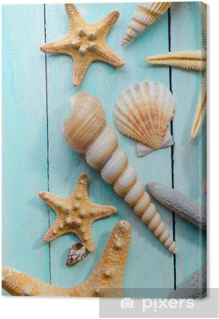 Tableau sur toile Coquillages sur fond de bois - Animaux marins