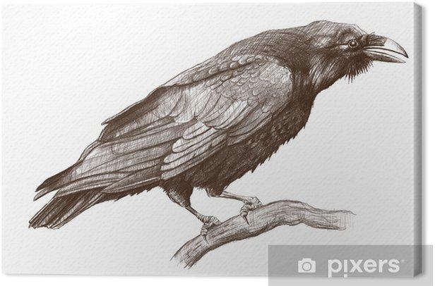 Tableau sur toile Corbeau - Art et création