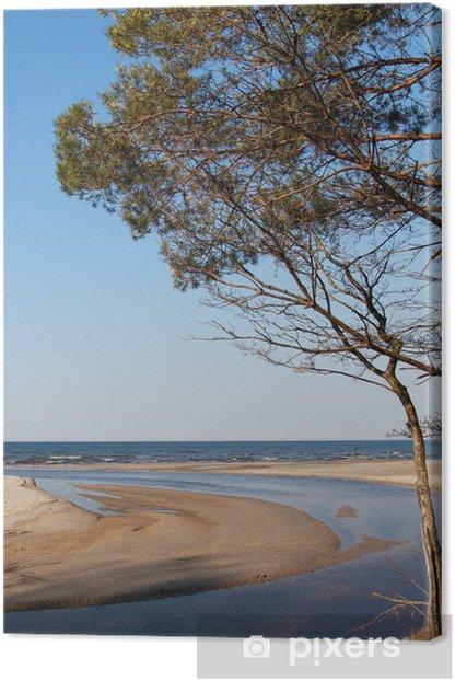 Tableau sur toile Côte de la mer Baltique - Europe