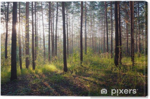 Tableau sur toile Coucher de soleil dans les bois - Thèmes