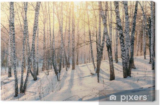 Tableau sur toile Coucher de soleil dans une forêt d'hiver - Thèmes