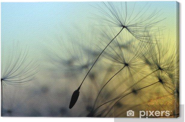 Tableau sur toile Coucher de soleil doré et le pissenlit, fond zen méditative - Thèmes