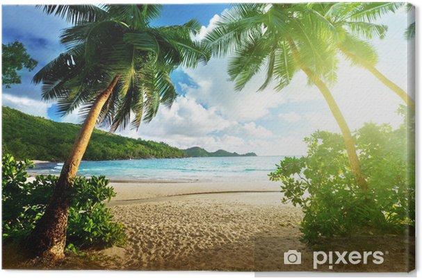 Tableau sur toile Coucher de soleil sur la plage, l'île de Mahé, Seychelles - Palmiers