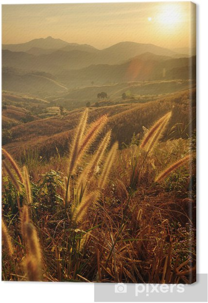 Tableau sur toile Couchers de soleil sur les montagnes. - Montagne