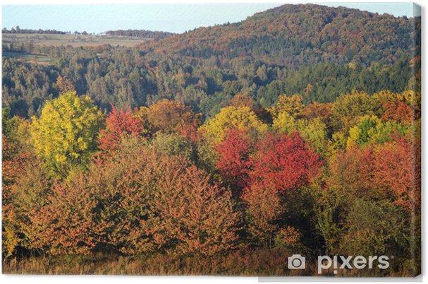 Tableau sur toile Couleur vibrante forêt d'automne - Saisons