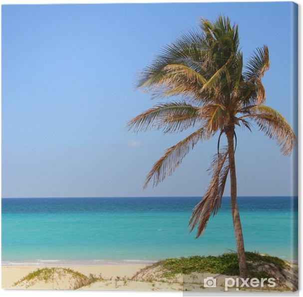 Tableau sur toile Cuba - Playa Megano - Thèmes