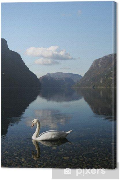 Tableau sur toile Cygne dans Frafjord - Europe