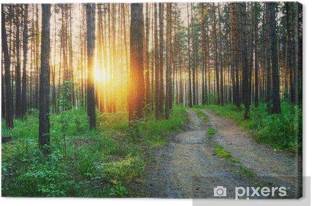 Tableau sur toile Dans-le-bois - Forêt