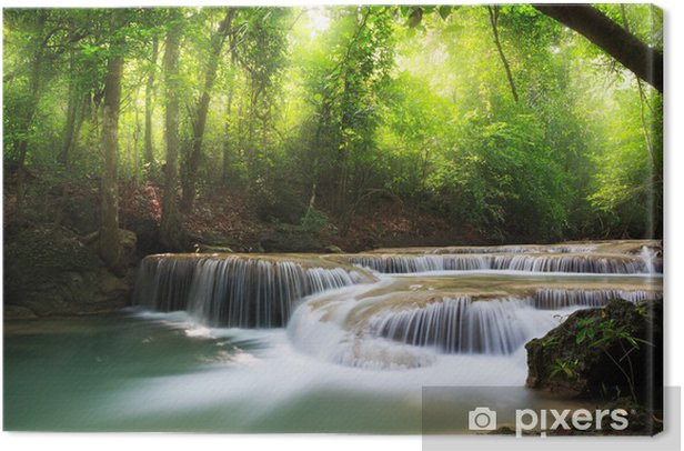 Tableau sur toile Deep forest Waterfall - Thèmes