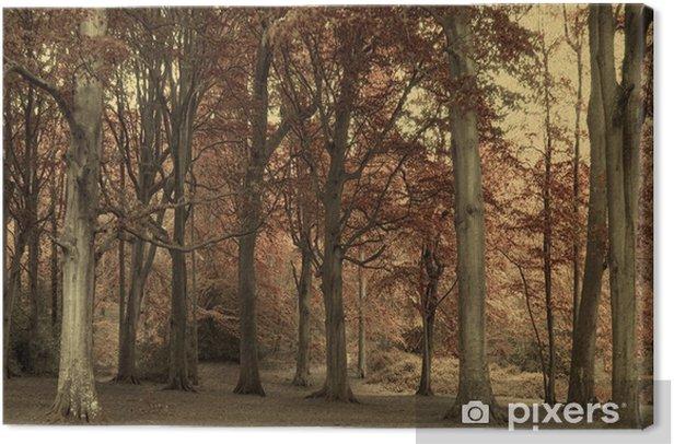 Tableau sur toile Des arbres et des feuilles - Arbres