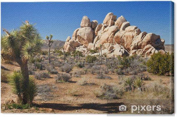 Tableau sur toile Désert de Mojave Panorama - Désert