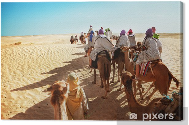 Tableau sur toile Desert sahara - Afrique