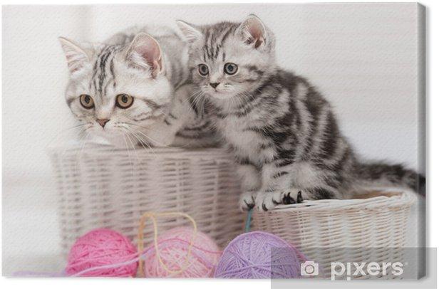 Tableau sur toile Deux chats dans un panier avec des pelotes de laine - Thèmes