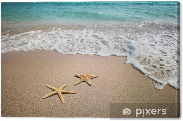 Tableau sur toile Deux étoiles de mer sur une plage - Thèmes