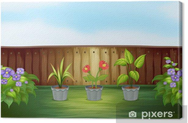 Tableau sur toile Différents types de plantes à l'intérieur de la clôture en bois - Arrière plans