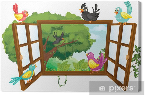Tableau sur toile Divers oiseaux - Sticker mural