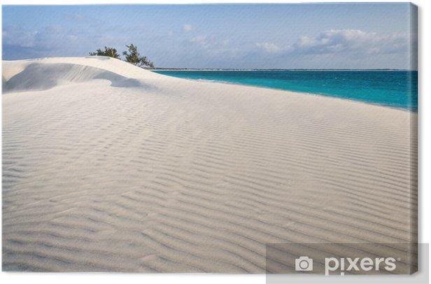 Tableau sur toile Dune de sable blanc - Afrique