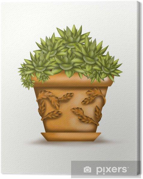 Tableau sur toile Echeveria dans vaso - Maisons et jardins