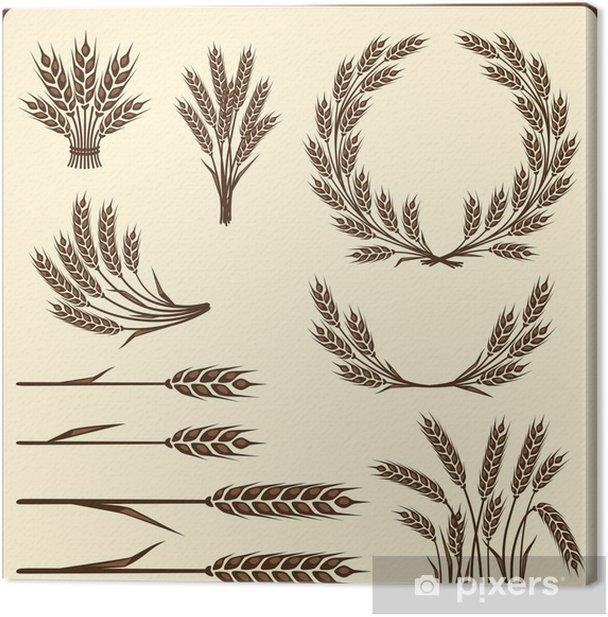 Tableau sur toile Éléments de collecte de céréales pour la conception. - Agriculture