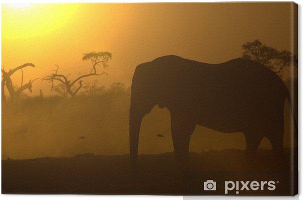 Tableau sur toile Eléphant d'Afrique au lever du soleil - Thèmes