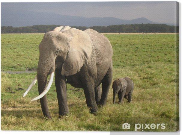 Tableau éléphanteau 5 tableaux sur toile elephant un elephanteau