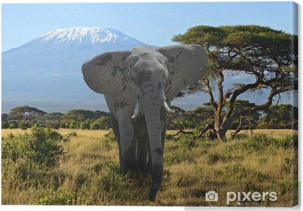 Tableau sur toile Éléphants du Kilimandjaro - Thèmes
