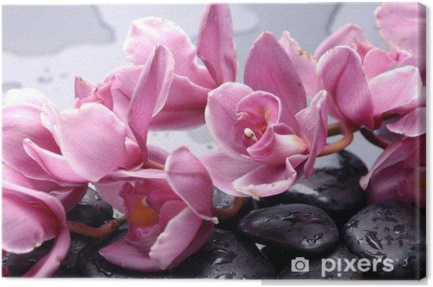 Tableau sur toile Ensemble de fleur d'orchidée cattleya et la pierre avec des gouttes d'eau - Thèmes
