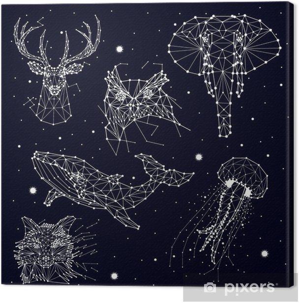 Tableau sur toile Ensemble de la constellation, l'éléphant, le hibou, le cerf, les baleines, les méduses, le renard, étoiles, graphiques vectoriels - Animaux