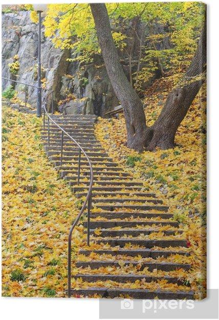 Tableau sur toile Escalier avec des feuilles d'automne coloré - Paysages urbains