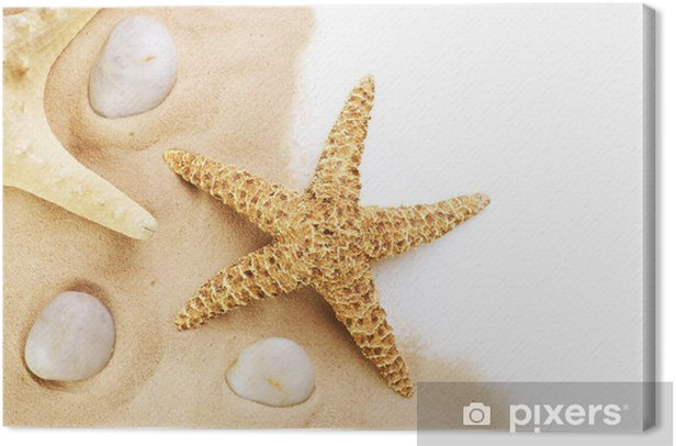 Tableau sur toile Etoile de mer sur le sable - Vacances